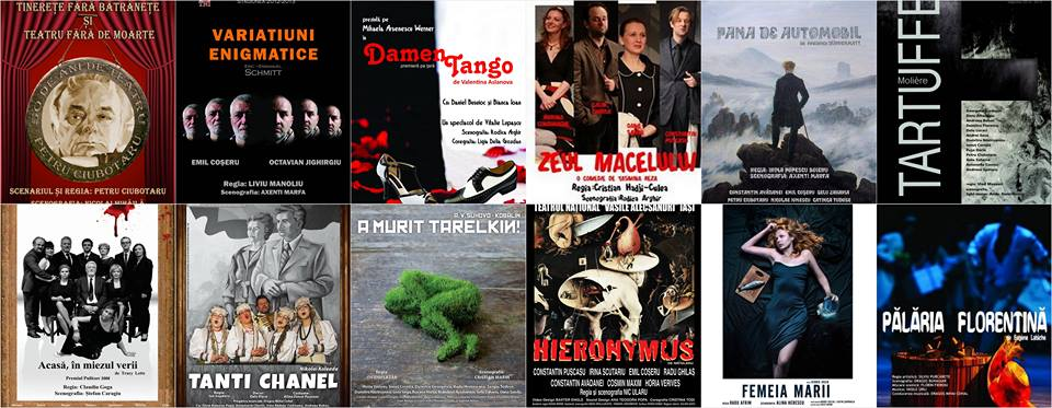 spectacole teatrul national iasi noiembrie 2014