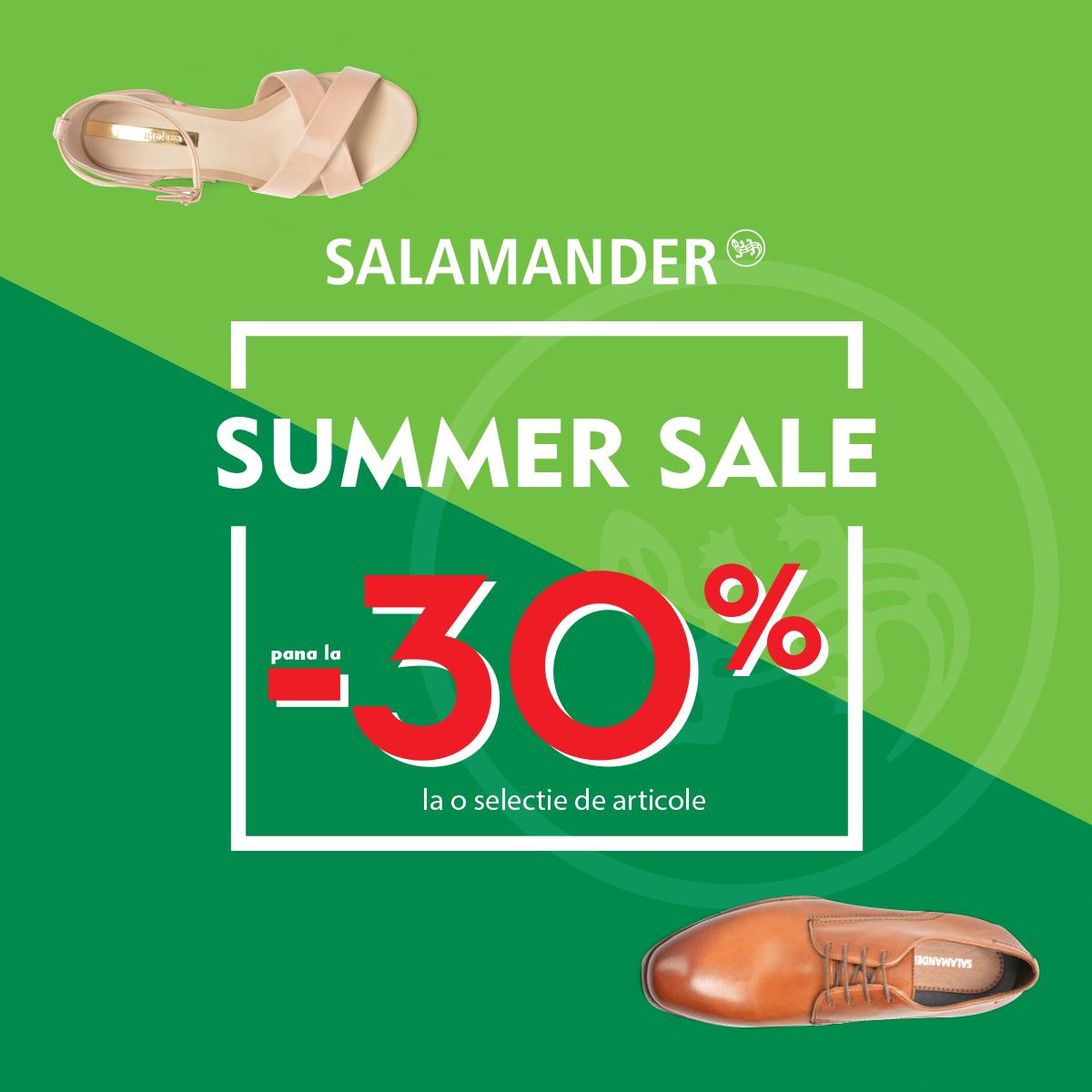 Salamander_reduceri_felicia