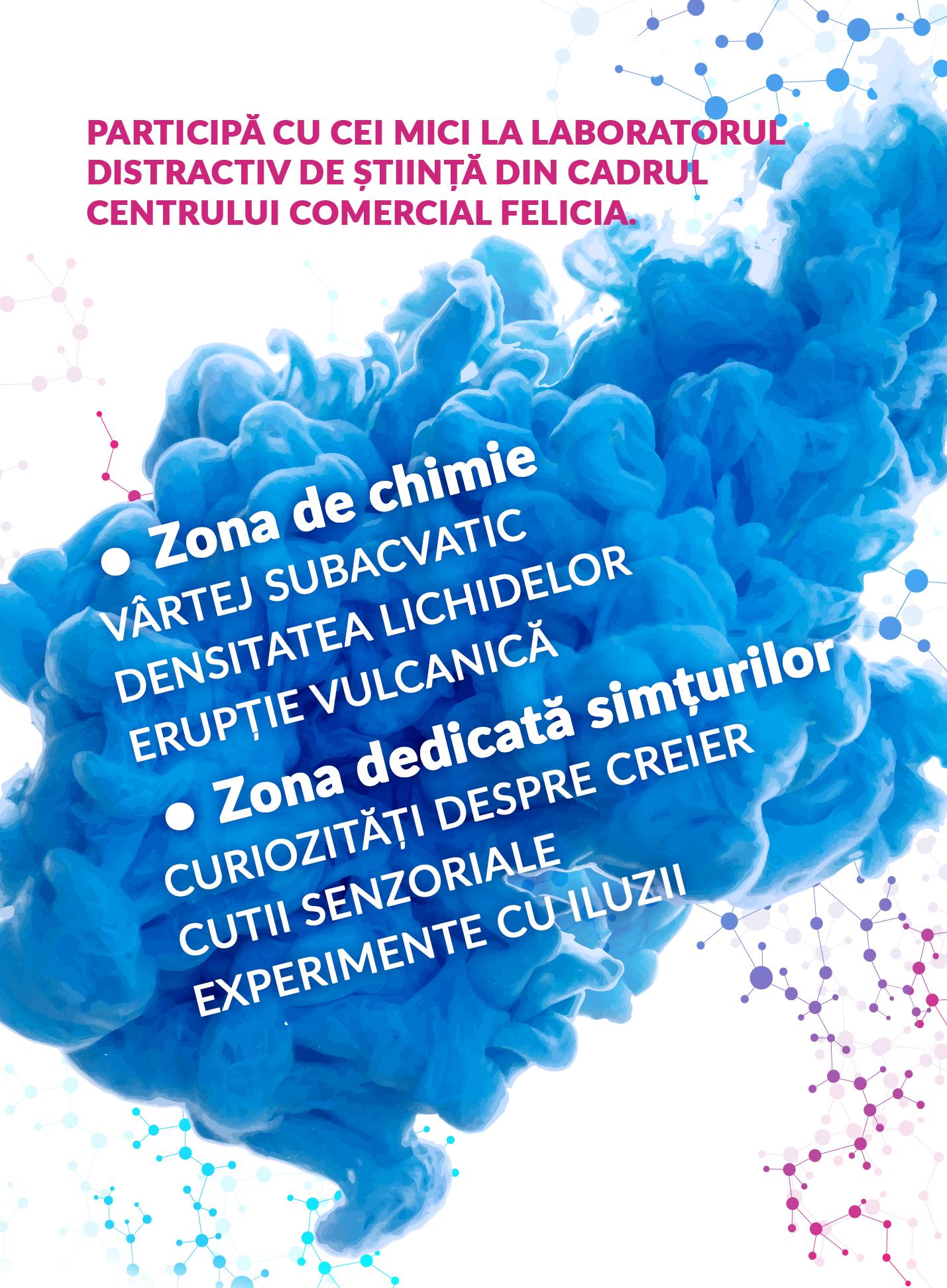 laborator_felicia