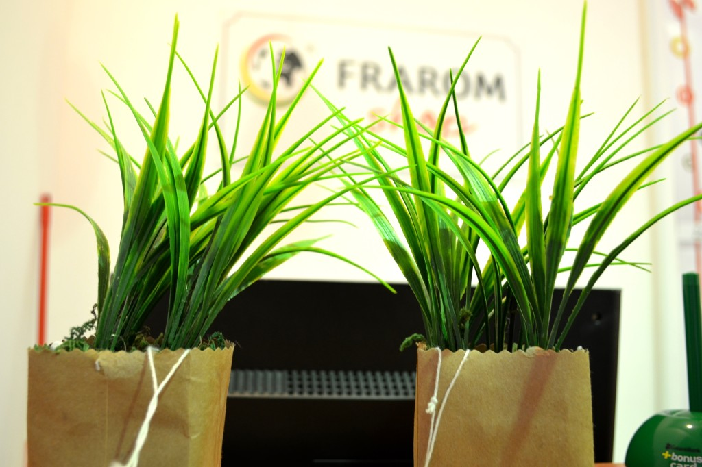 plante-artificiale-frarom